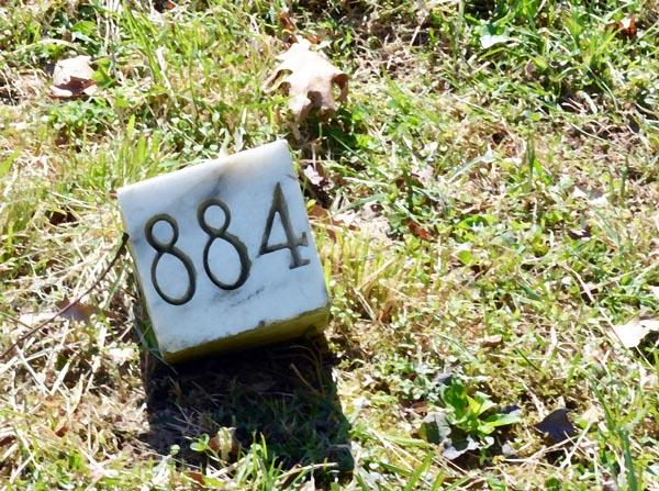 Sunnyside grave 884.