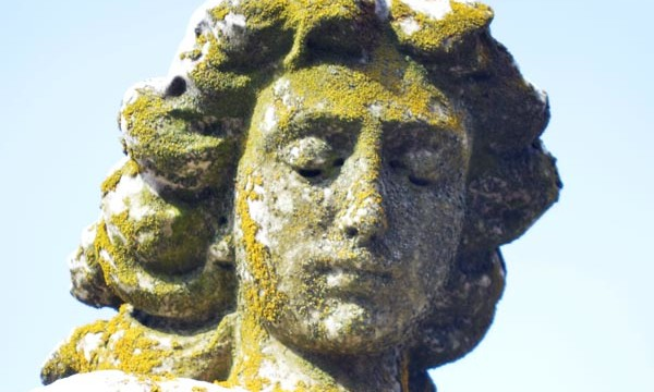 angel4-Jan2013
